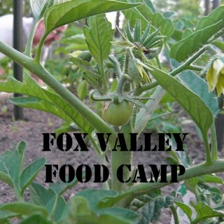Fox Valley Food Camp