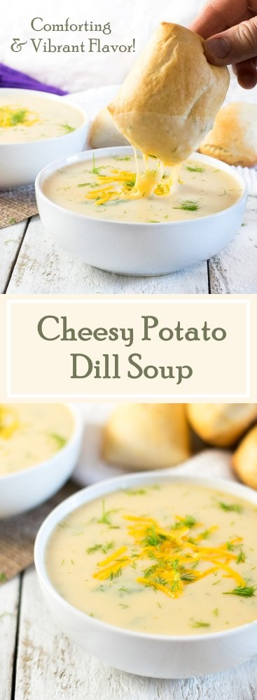 Cheesy Potato Dill Soup Recipe