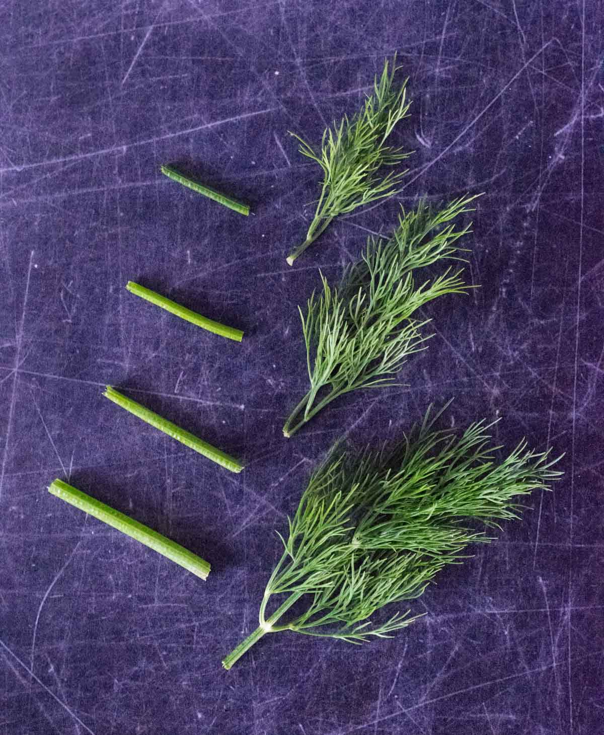Chopped dill on black background.